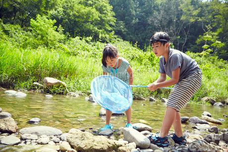 川遊びをする男の子と女の子の写真素材 [FYI02057436]