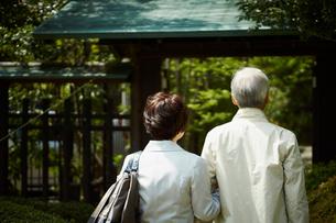 旅行をするシニア夫婦の写真素材 [FYI02057446]
