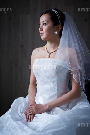 花嫁の写真素材 [FYI02057540]