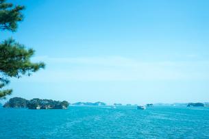 春の松島の写真素材 [FYI02057582]