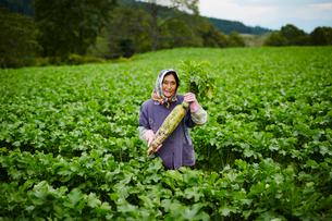 ダイコンを持つ笑顔の農婦の写真素材 [FYI02057589]