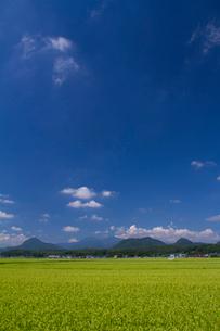 七ツ森と水田 宮城県の写真素材 [FYI02057671]