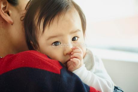 母親に抱かれる赤ちゃんの写真素材 [FYI02057905]