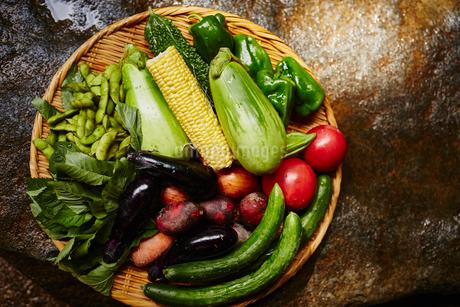 夏野菜の盛り合わせの写真素材 [FYI02057992]