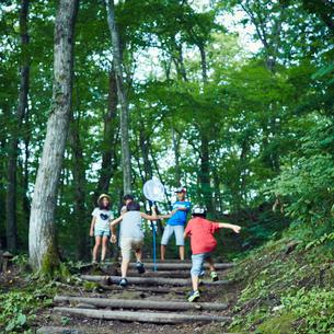森林の中の階段を駆け上がる子供達の写真素材 [FYI02058232]