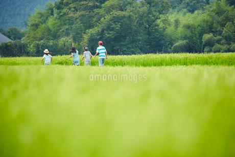 緑の田園で走る子供達の写真素材 [FYI02058236]