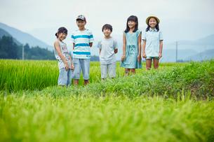 緑の田園に立つ子供達の写真素材 [FYI02058283]
