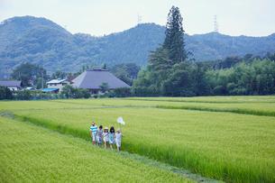 緑の田園とあぜ道を歩く子供達の写真素材 [FYI02058319]