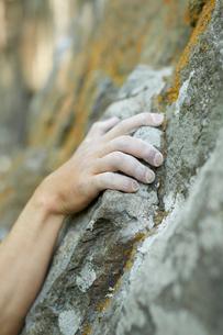 ロッククライミングをする男性の手の写真素材 [FYI02058381]