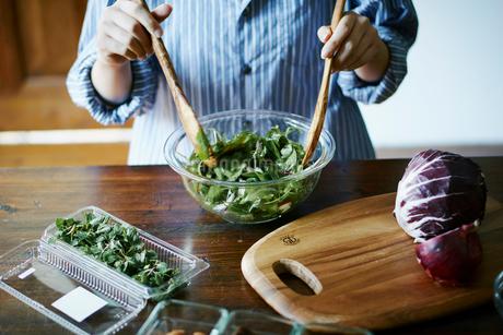 サラダを作る女性の写真素材 [FYI02058514]