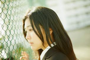 フェンスの向こうを見つめる女子学生の写真素材 [FYI02058525]