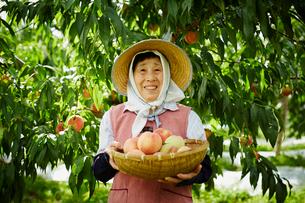 収穫したモモを持つ笑顔の農婦の写真素材 [FYI02058655]