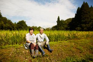 稲田に座る笑顔の農家夫婦の写真素材 [FYI02058872]