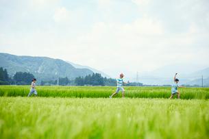緑の田園で走る子供達の写真素材 [FYI02058873]