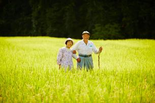 稲田に立つ農家夫婦の写真素材 [FYI02058904]