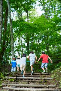 森林の中の階段を駆け上がる子供達の写真素材 [FYI02058959]