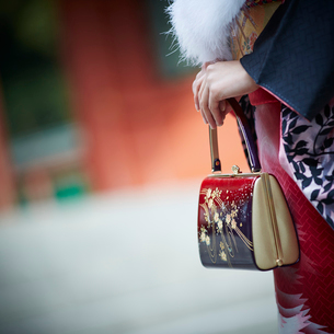 バッグを持つ振袖姿の女性の手元の写真素材 [FYI02058972]