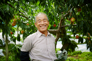 モモ畑の笑顔の農夫の写真素材 [FYI02059136]