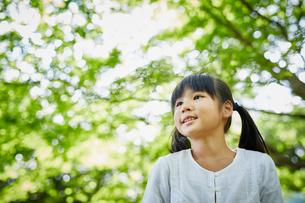 緑の木々を見上げる女の子の写真素材 [FYI02059144]