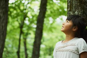 木の幹にもたれ見上げる女の子の横顔の写真素材 [FYI02059332]