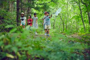 虫取りをする子供達の写真素材 [FYI02059337]