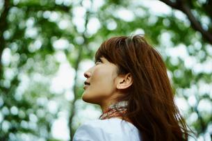 緑の木々を見上げる女性の写真素材 [FYI02059397]