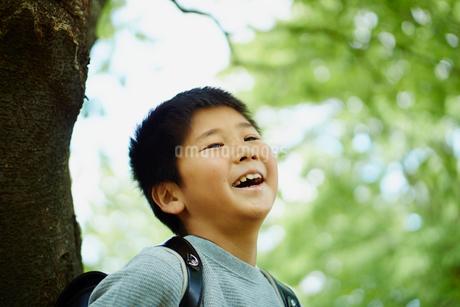 木の幹にもたれる笑顔の小学生の男の子の写真素材 [FYI02059570]