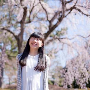 桜と笑顔の10代女性の写真素材 [FYI02059588]