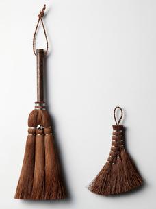 棕櫚荒神箒の写真素材 [FYI02059600]
