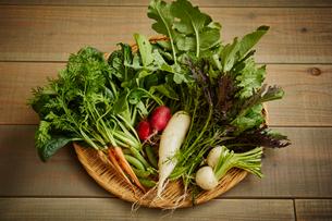 無農薬野菜盛り合わせの写真素材 [FYI02059691]