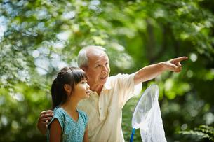捕虫網を持った女の子と指差す祖父の写真素材 [FYI02059793]