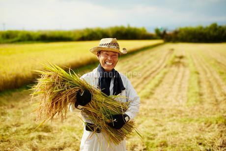 稲を抱える笑顔の農夫の写真素材 [FYI02059797]