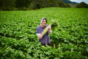 ダイコンを持つ笑顔の農婦の写真素材 [FYI02059867]