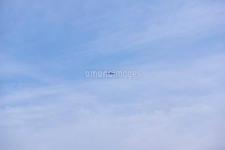 青空と旅客機の写真素材 [FYI02060132]