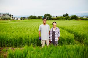 水田に立つ農家夫婦の写真素材 [FYI02060142]