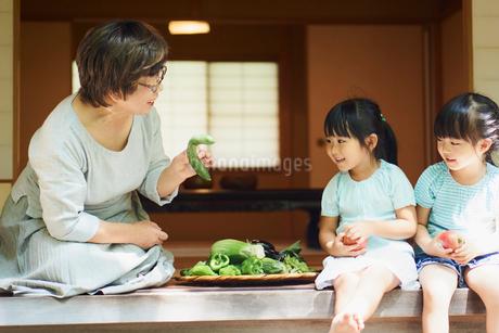 縁側で話す祖母と孫の写真素材 [FYI02060222]