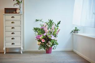 部屋に飾った花の写真素材 [FYI02060226]