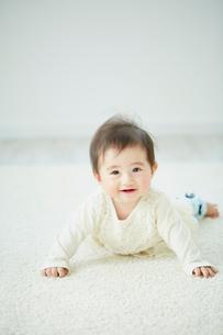 はいはいをする赤ちゃんの写真素材 [FYI02060286]
