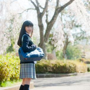 女子中学生の写真素材 [FYI02060315]