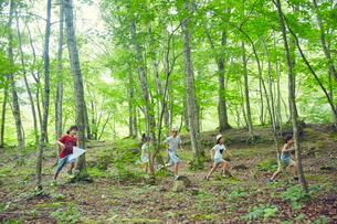 森林の中を走る子供達の写真素材 [FYI02060378]