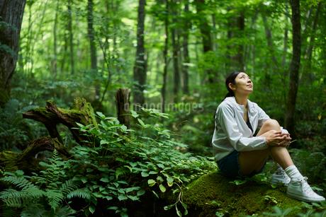 森の中で座る女性の写真素材 [FYI02060401]