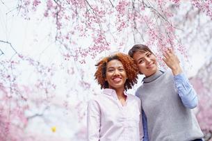 花見をする外国人女性2人の写真素材 [FYI02060472]