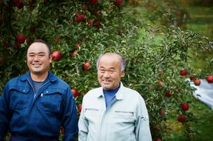 リンゴ畑の農夫2人の写真素材 [FYI02060610]