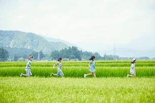 緑の田園で走る子供達の写真素材 [FYI02060637]