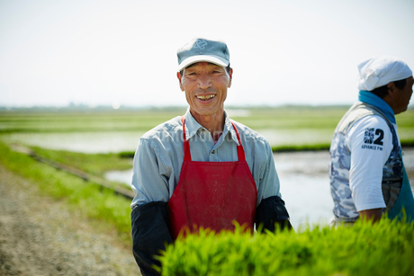 田植えをする笑顔の農夫の写真素材 [FYI02060734]
