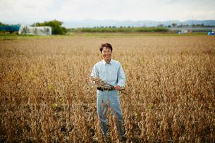 大豆畑の笑顔の農夫の写真素材 [FYI02060902]