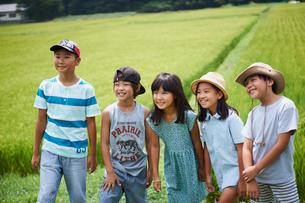田んぼと子供達の写真素材 [FYI02060917]