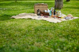 ピクニックの写真素材 [FYI02060996]