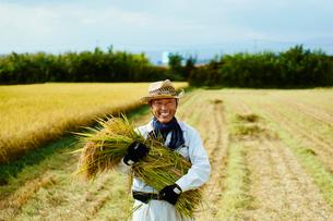 稲を抱える笑顔の農夫の写真素材 [FYI02061018]