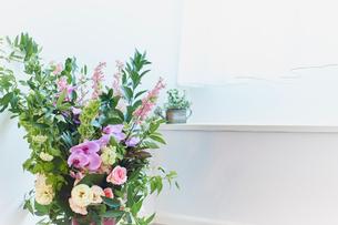 窓辺に飾った花の写真素材 [FYI02061049]